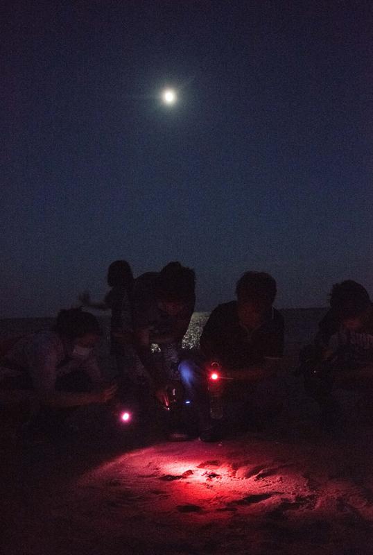 「誕生の時」(3枚組) 加藤 和弘 (一般応募) 3/3