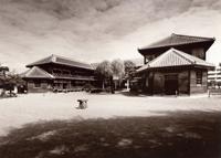 第8回 1997年 「旧登米高等尋常小学校」(組写真) 伊藤 邦彦 建設新聞社